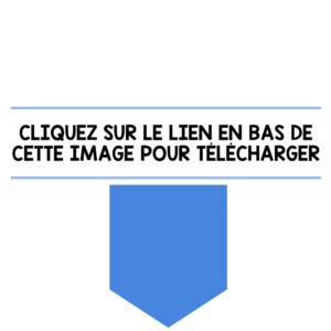 CLIQUEZ SUR LE LIEN EN BAS DE CE BOUTON POUR TÉLÉCHARGER (1)