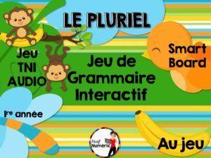 ProfNumericTNI_Grammaire_LePluriel_PUBLIE_001