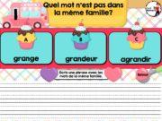 ProfNumericTNI_Grammaire_FamilleDeMots_PUBLIE_005