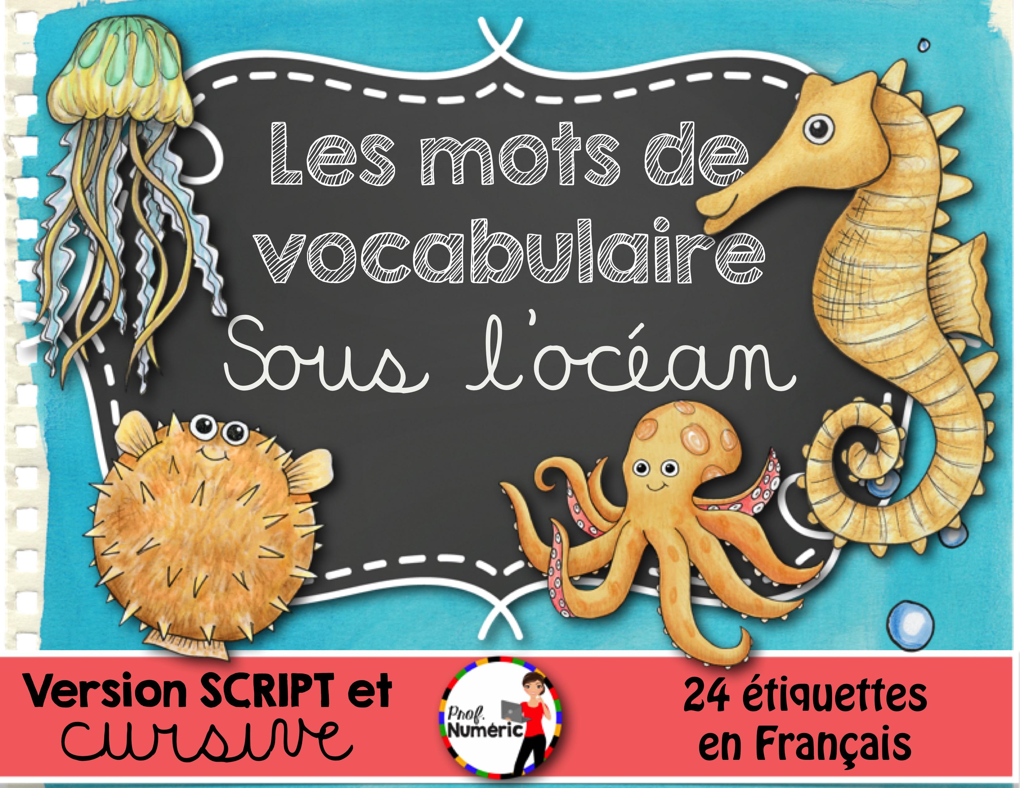 SOUS L'OCÉAN – Mots-étiquettes (script et cursif)
